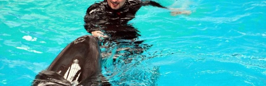 florin alexandru delfinariu