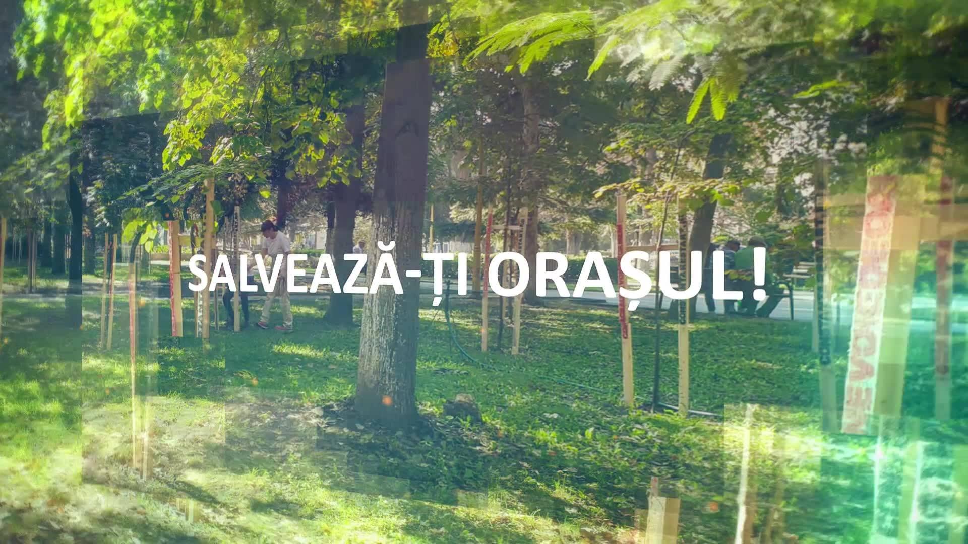 """Se plantează 200 de copaci în fața Universității """"Ovidius"""""""