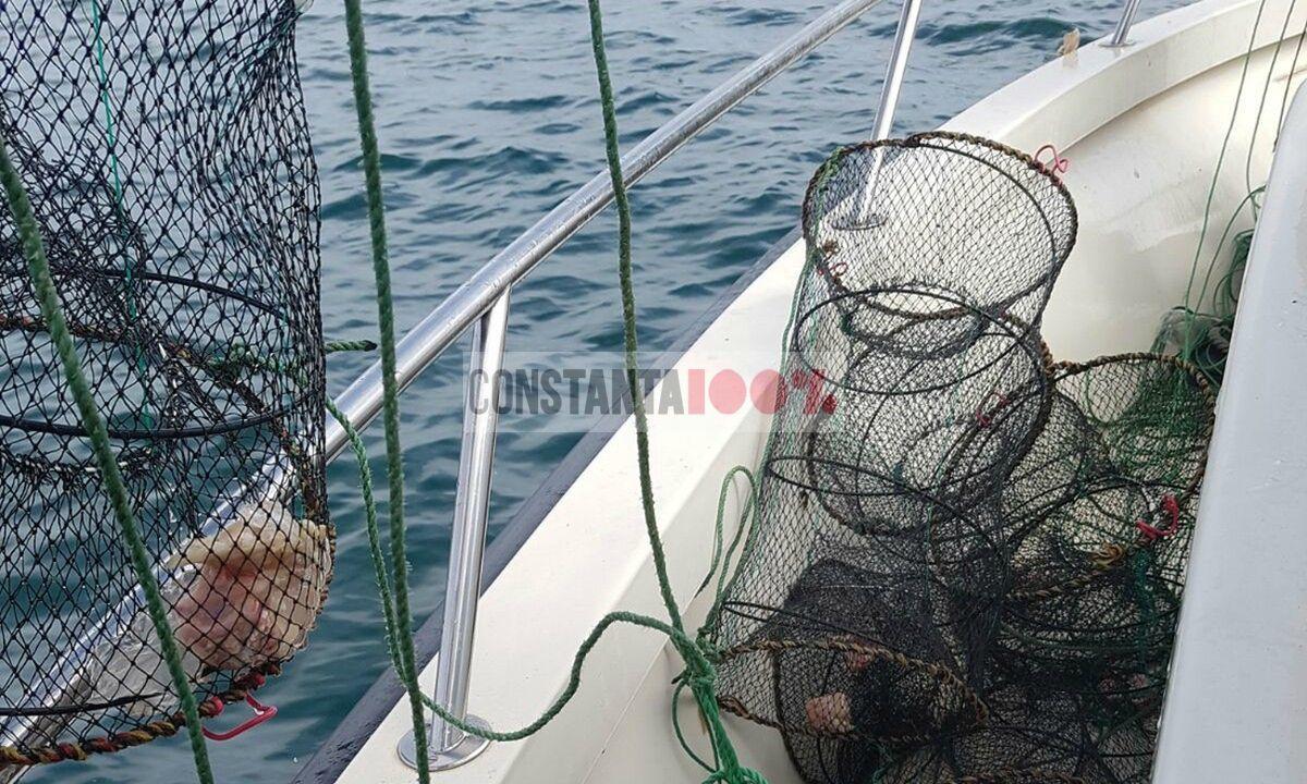 prohibiție pescuit