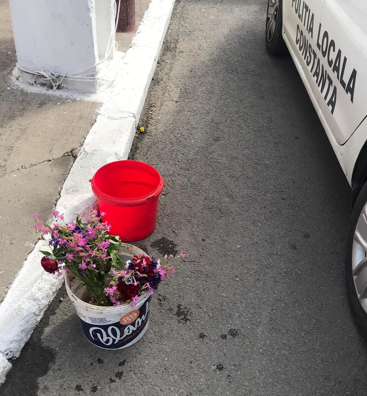 Ce amenzi a dat Poliția Locală Constanța de Paștele blajinilor