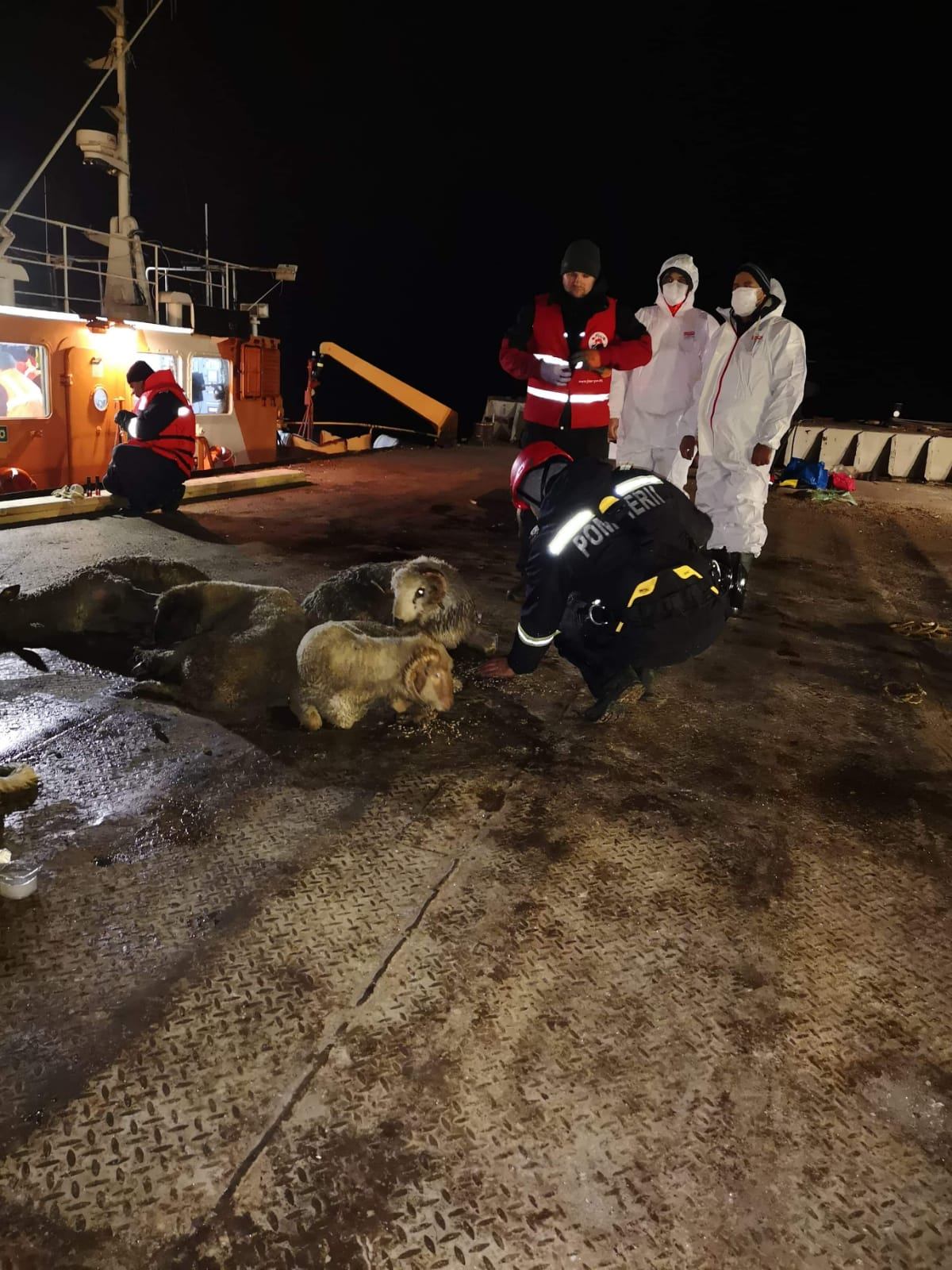 salvare oi nava scufundata