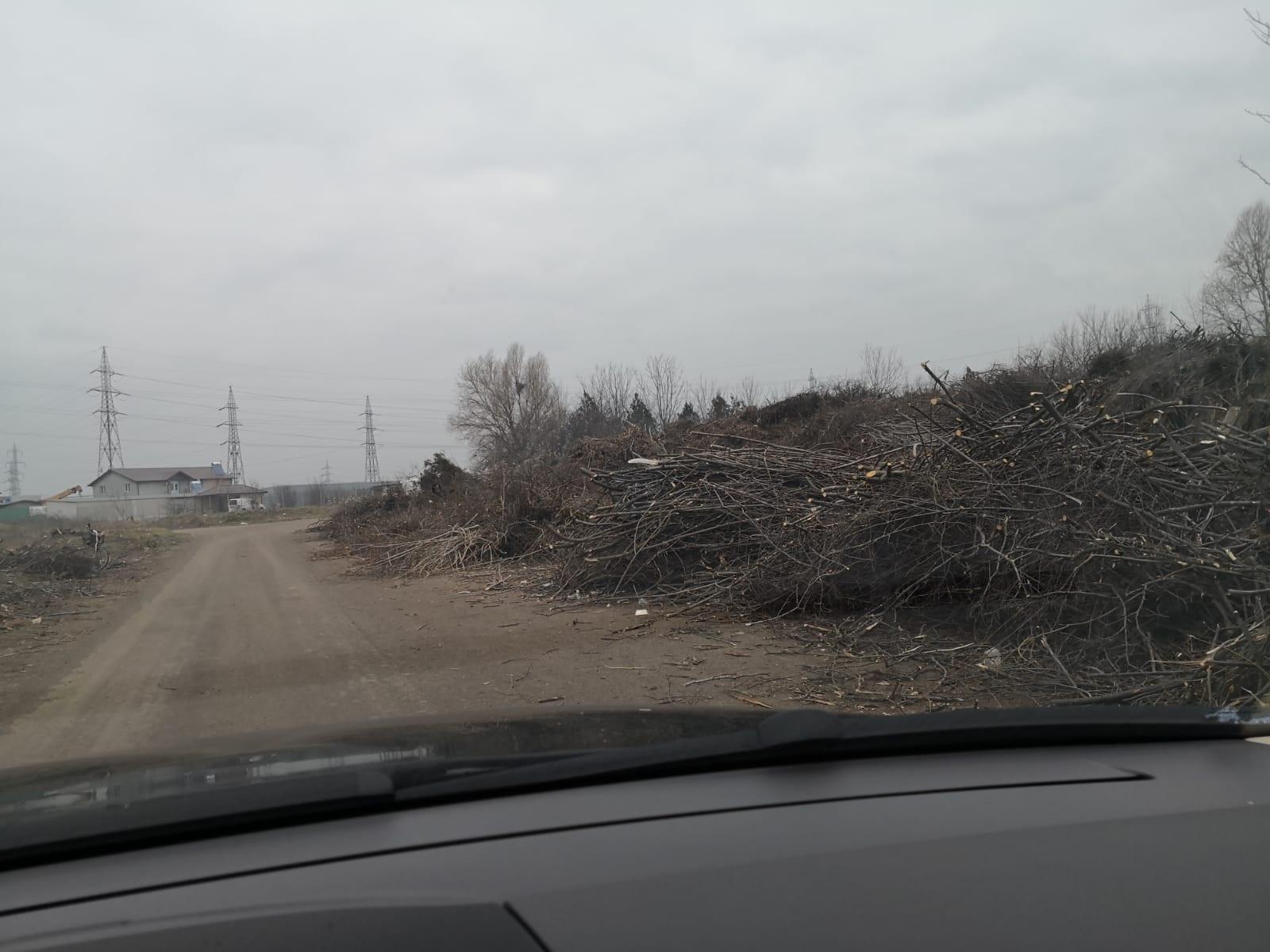 Strada cu cele mai multe gunoaie din Constanța