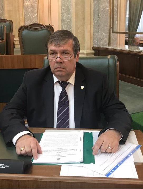 senatoru Ștefan Mihu, PSD Constanța