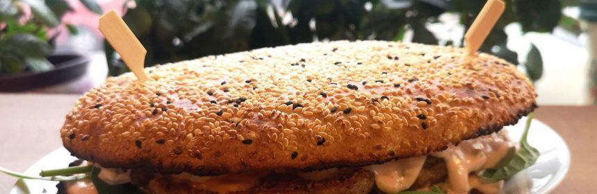 burger pescăria lui matei