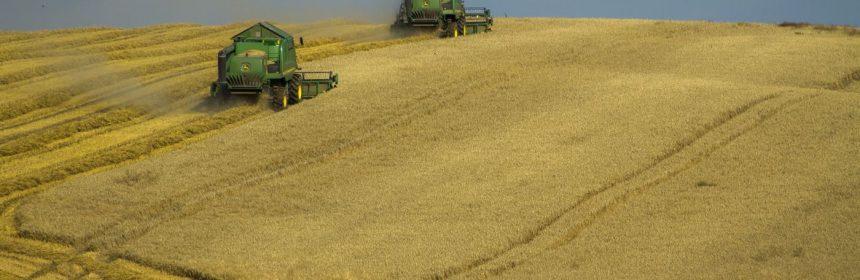 Recensământul General Agricol
