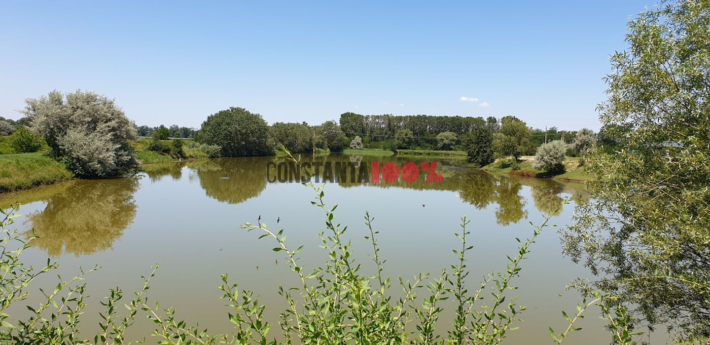Lacul Domneasca