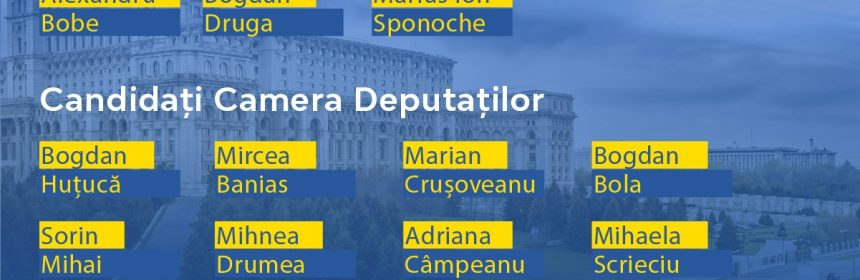 Lista candidati PNL Constanța