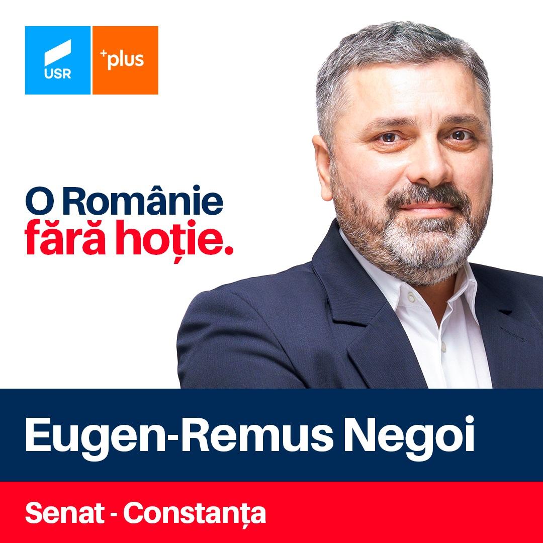 Remus Negoie