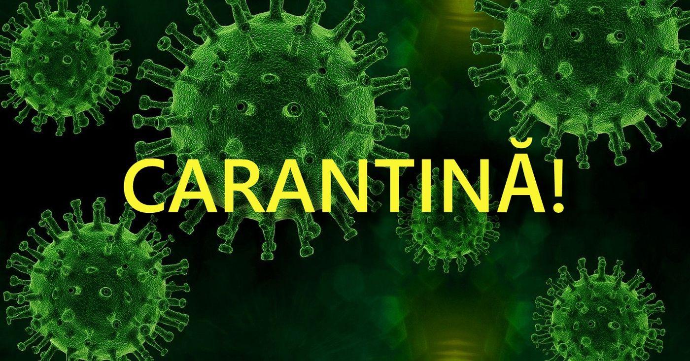 coronavirus carantina eforie lazu