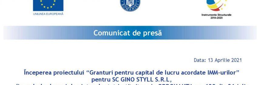 Comunicat de presa inceput - Gino Styll