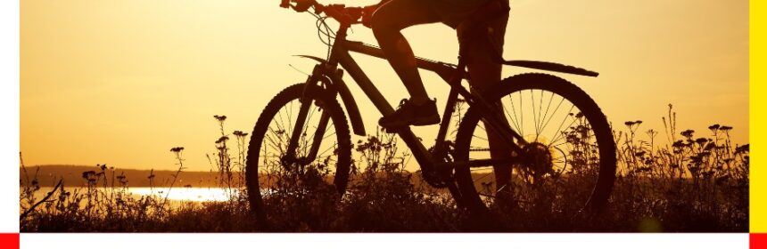 marian-crusoveanu-bicicleta