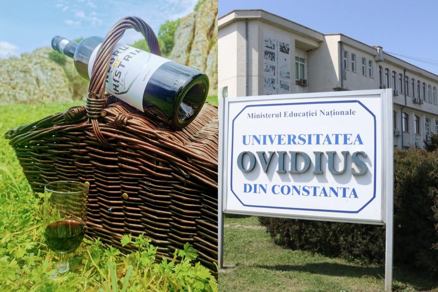 O firmă care a raportat pierderi de 1,7 milioane lei, la o cifră de afaceri de 1,8 milioane lei, sponsorizează Universitatea Ovidius