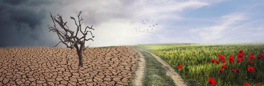 schimbare-climatica